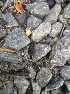 Roofing nails recovered from the driveway after carriage barn roof was replaced.