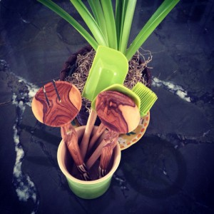 Utensils reconnoitering with Amaryllis. (Credit: virtualDavis)