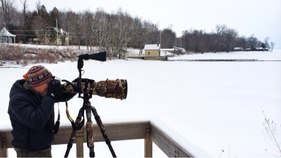 John DiGiacomo photographing Goldeneye ducks at Essex ferry dock. (Photo: virtualDavis)